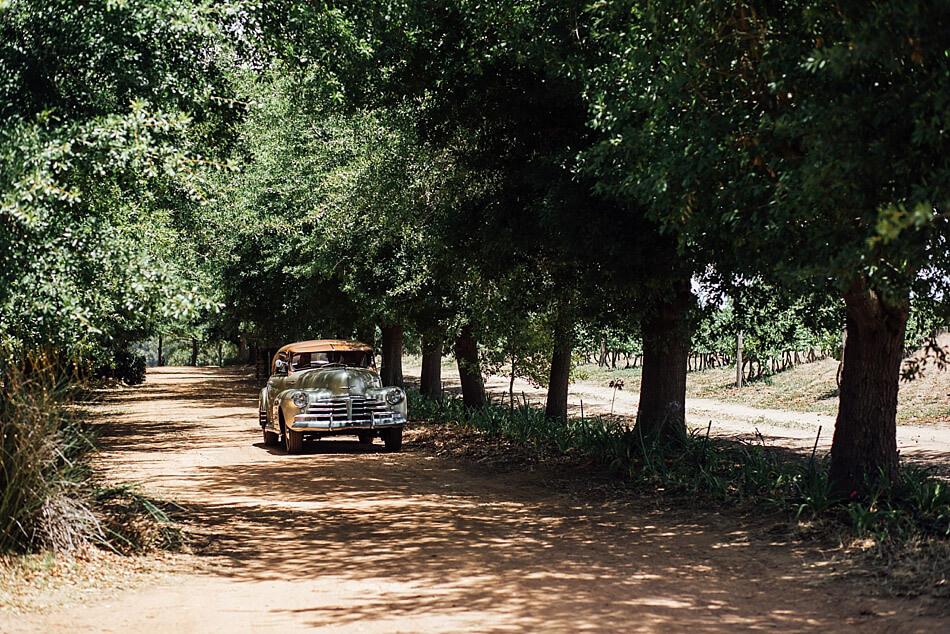 nikki-meyer-cape-town-wedding-phtographer-de-meye-heidi-leonard_012